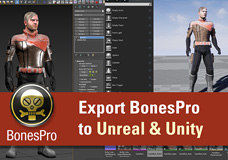 BonesPro -> Skin Export explained